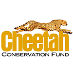 Cheetah_conservation_fund