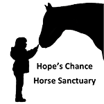 Hope's_chance_horse